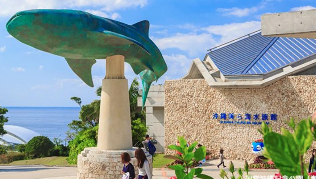一人旅におすすめ19 「美ら海水族館」